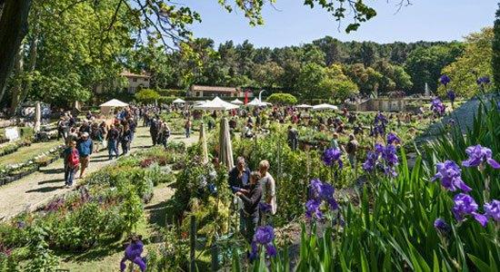Un jardin à la française tout à fait remarquable !