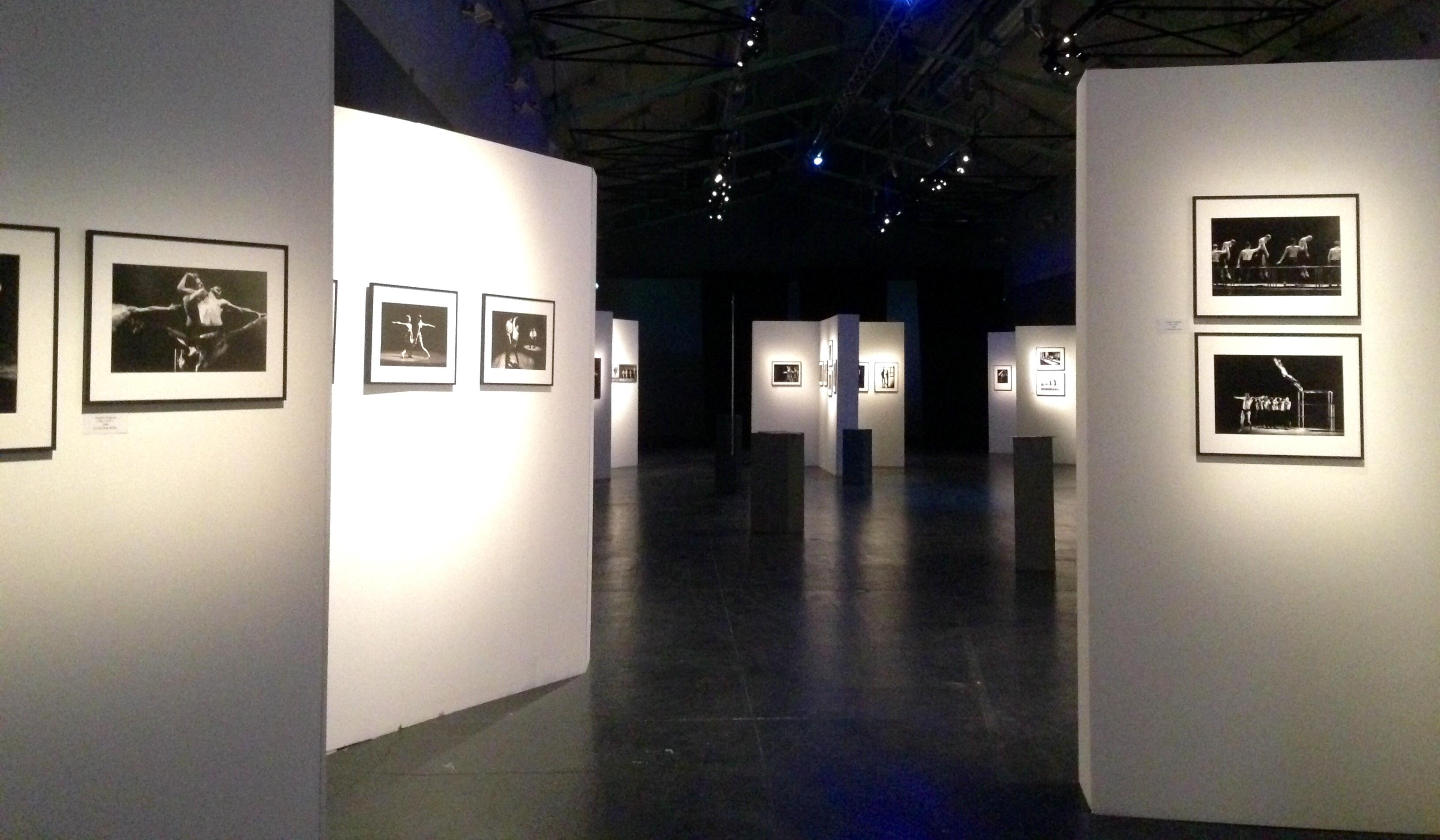 Expo - Danse contemporaine en Pays d'Aix