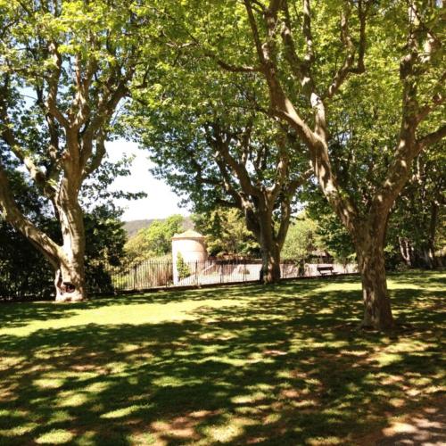 """""""Secrets d ici """"visite guidee autour de Sainte Victoire"""