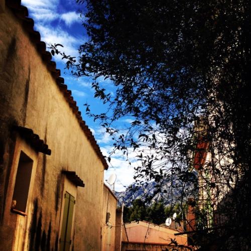 Puyloubier, la colline aux loups – Secrets d'ici