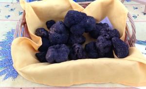 Marché de la truffe de Rognes - Provence
