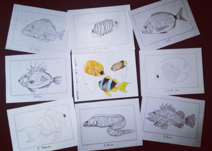 Cahier de coloriage - David d'Alessandro - Aquarelliste marseillais