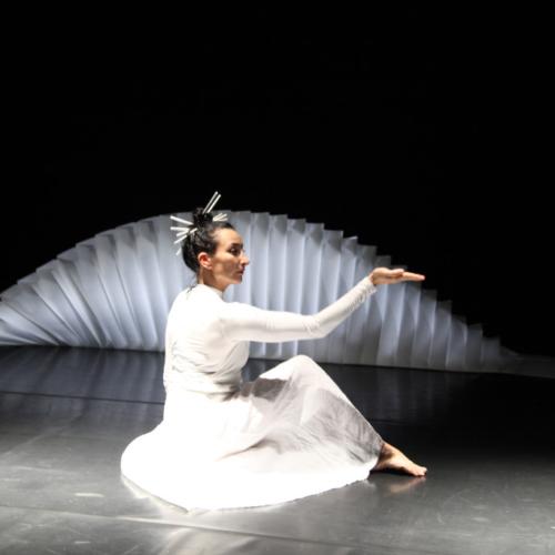 MADAME BUTTERFLY - Cie Nathalie Cornille - l'Entre-deux biennales