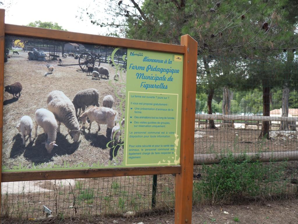 Le parc de Figuerolles de Maritgues