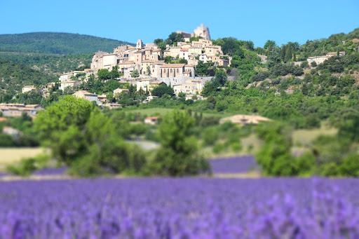 Lavande - vilage - Provence - Frédéric Paul