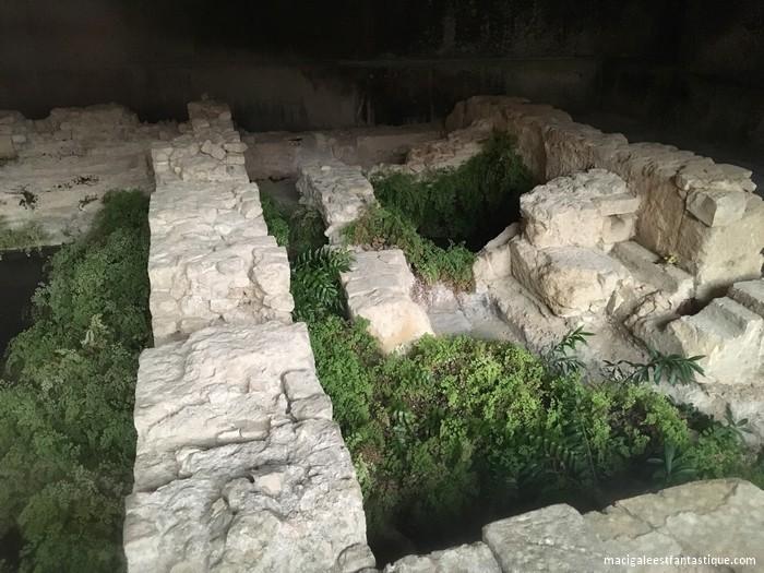 Vestige Thermes Romains - Thermes Sextius - Aix en Provence