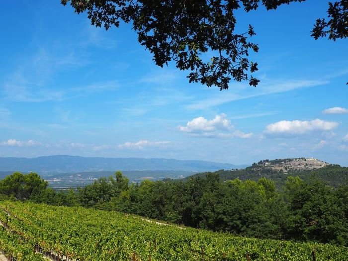 Domaine du Château La Coste - Le Puy Sainte Réparade - Provence