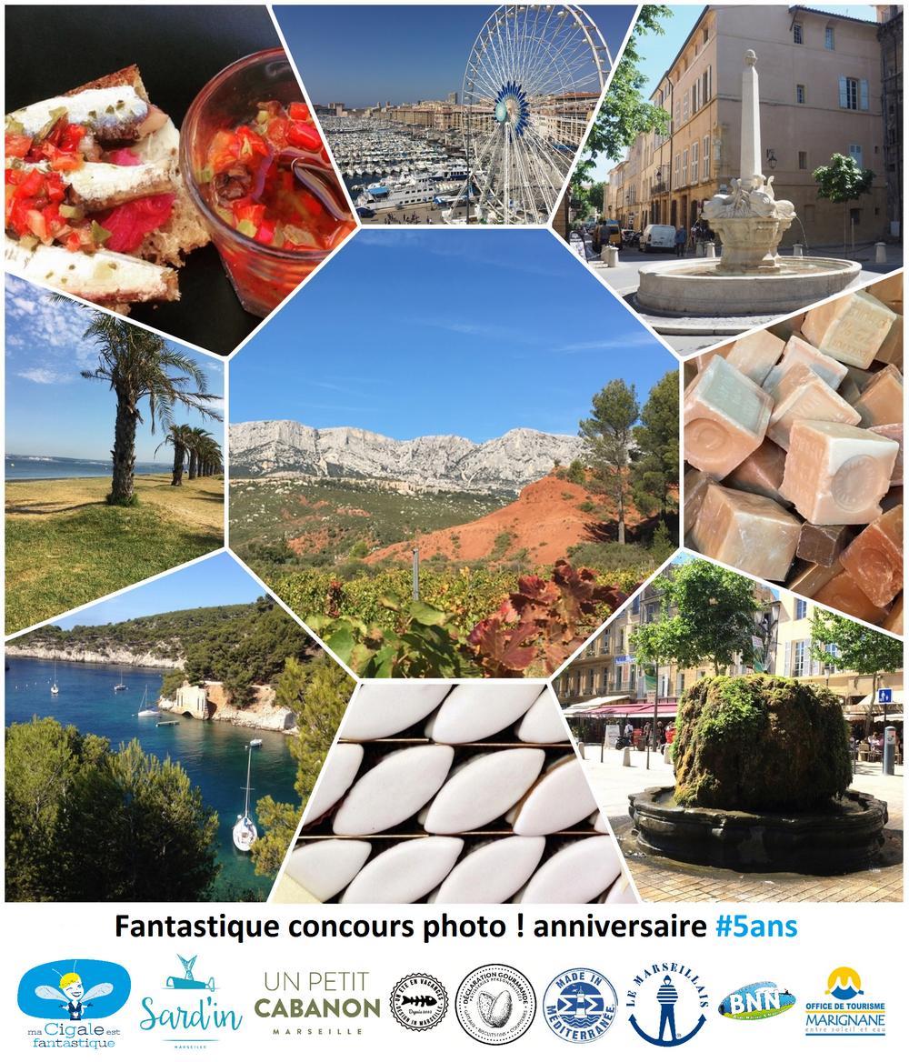 Concours photo ma cigale est fantastique 5 ans - Le Meilleur de la Provence