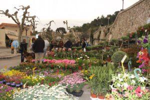 Fête des plantes et des fleurs Allauch