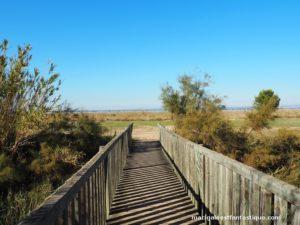 - Escales patrimoine Marignane - Balade nature -