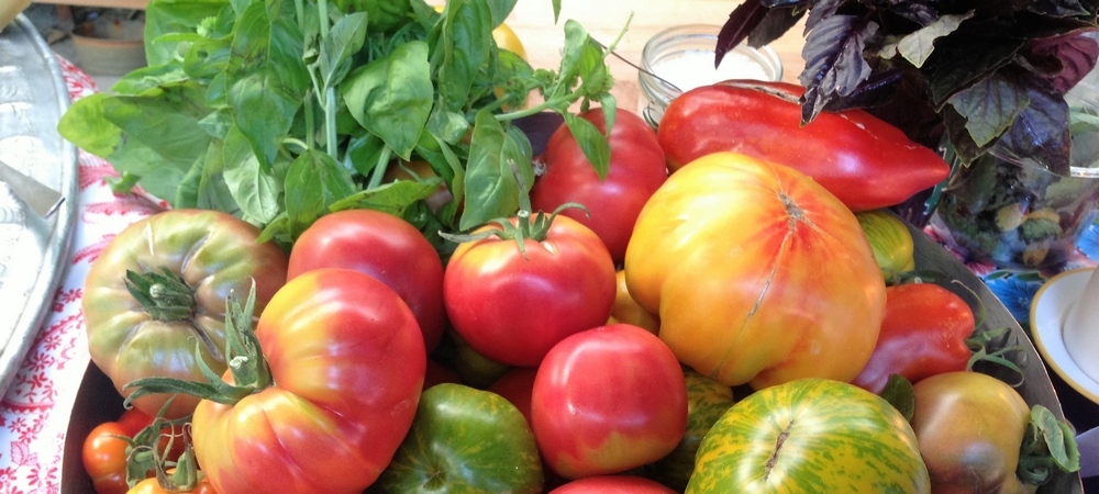 Tomates et basilic de Provence