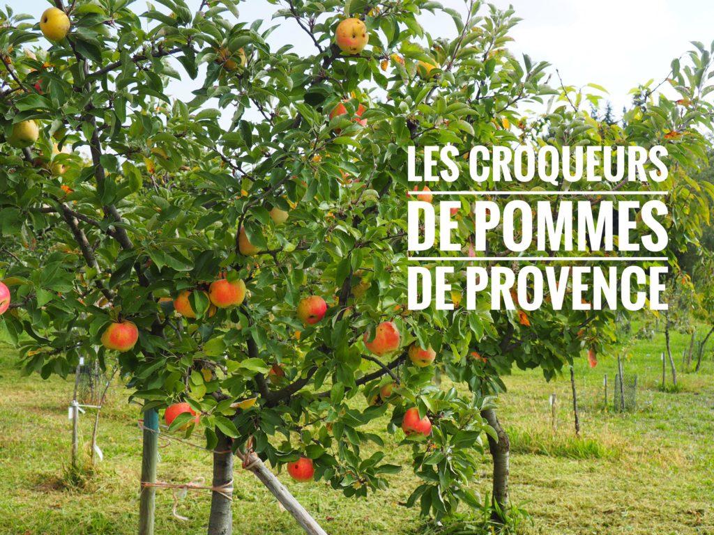 Espèces de vieilles poires ! 🍎 🍐 Les Croqueurs de pommes en Provence 🍎 🍐