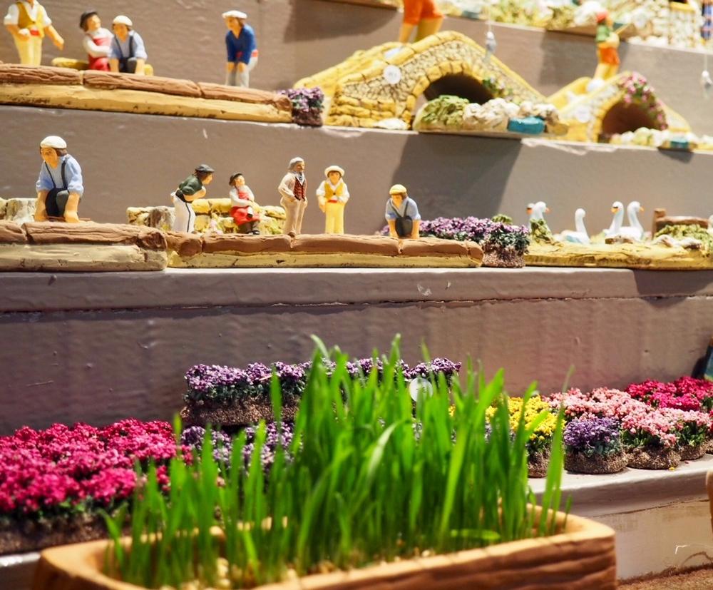 Blé de la Sainte Barbe et autres traditions de Noël en Provence