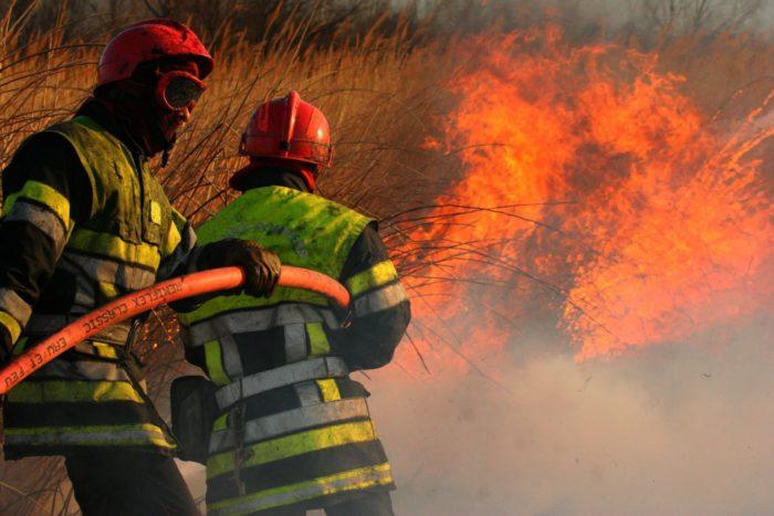 Pompiers 13 incendie de forêt