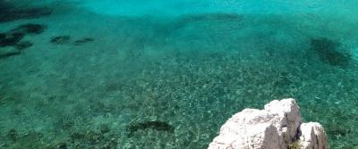 Plongée en eaux claires – Snorkeling dans les calanques
