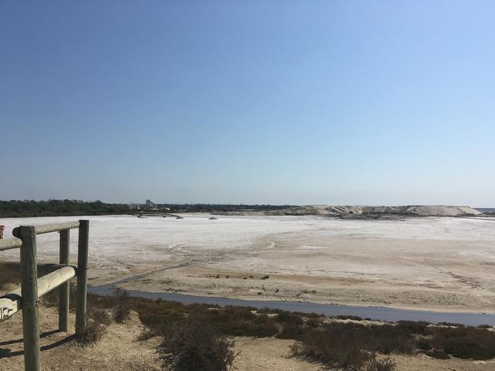 Marais salants - Les Salins de Giraud - Parc Naturel Régional de Camargue