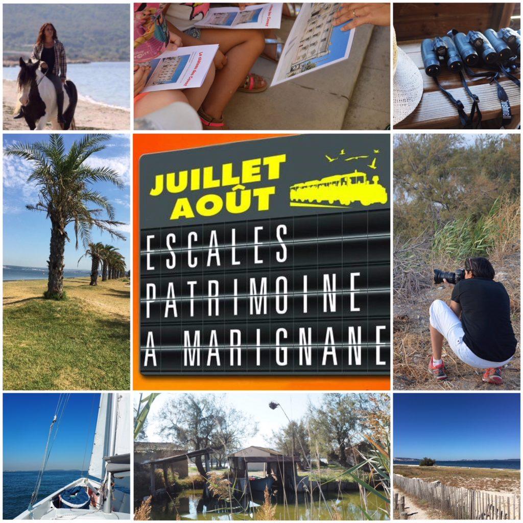 Le Bel été à Marignane 🌞 des activités découvertes pour s'envoler et même embarquer avec ma Cigale [jeu inside]