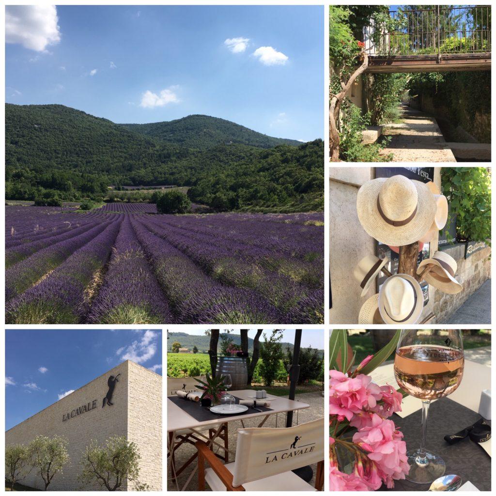 Sur la route de la lavande - Balade en Luberon - Lourmarin a Cavale